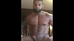 Heat Stripper