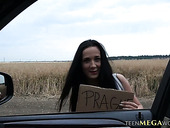 Sexy Fellow Traveler Nicole Love Has Quickie In The Car