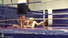 Bibi Noel Vs Amirah Adara Nude Wrestling